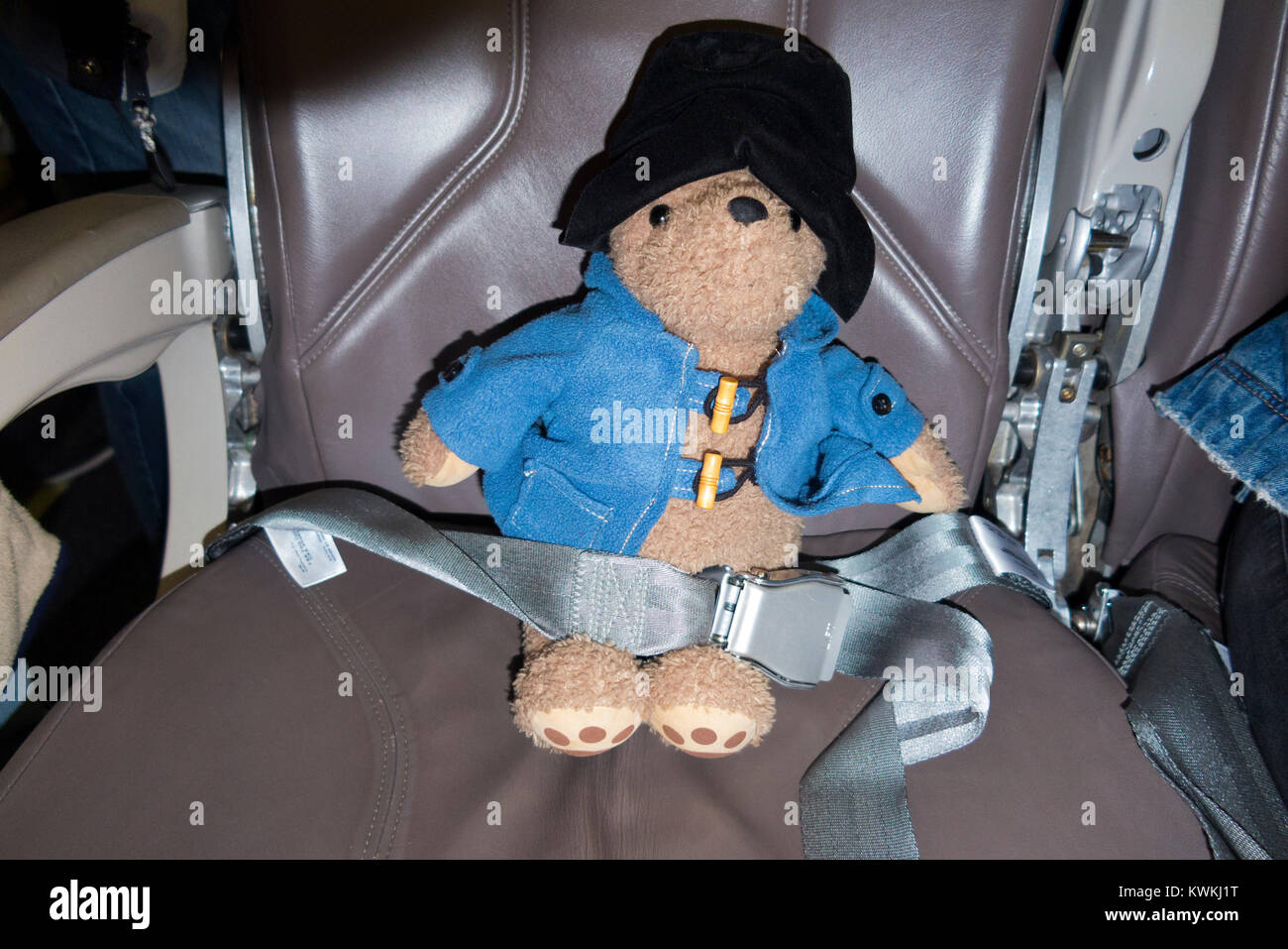 Childs soft toy, Paddington Bear, possibly lost passenger, sitting in an in airplane / air plane / aeroplane seat Stock Photo