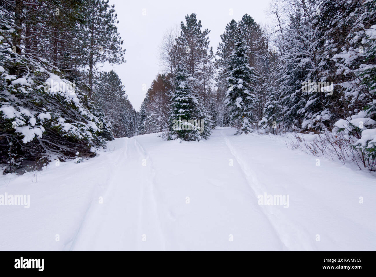 Snowmobile and ski trails in a Canadian winter scene. - Stock Image