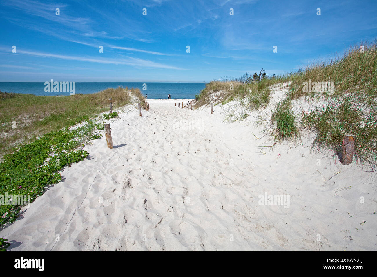Beach access to the west beach at 'Darsser Ort', Prerow, Fishland, Mecklenburg-Western Pomerania, Baltic - Stock Image