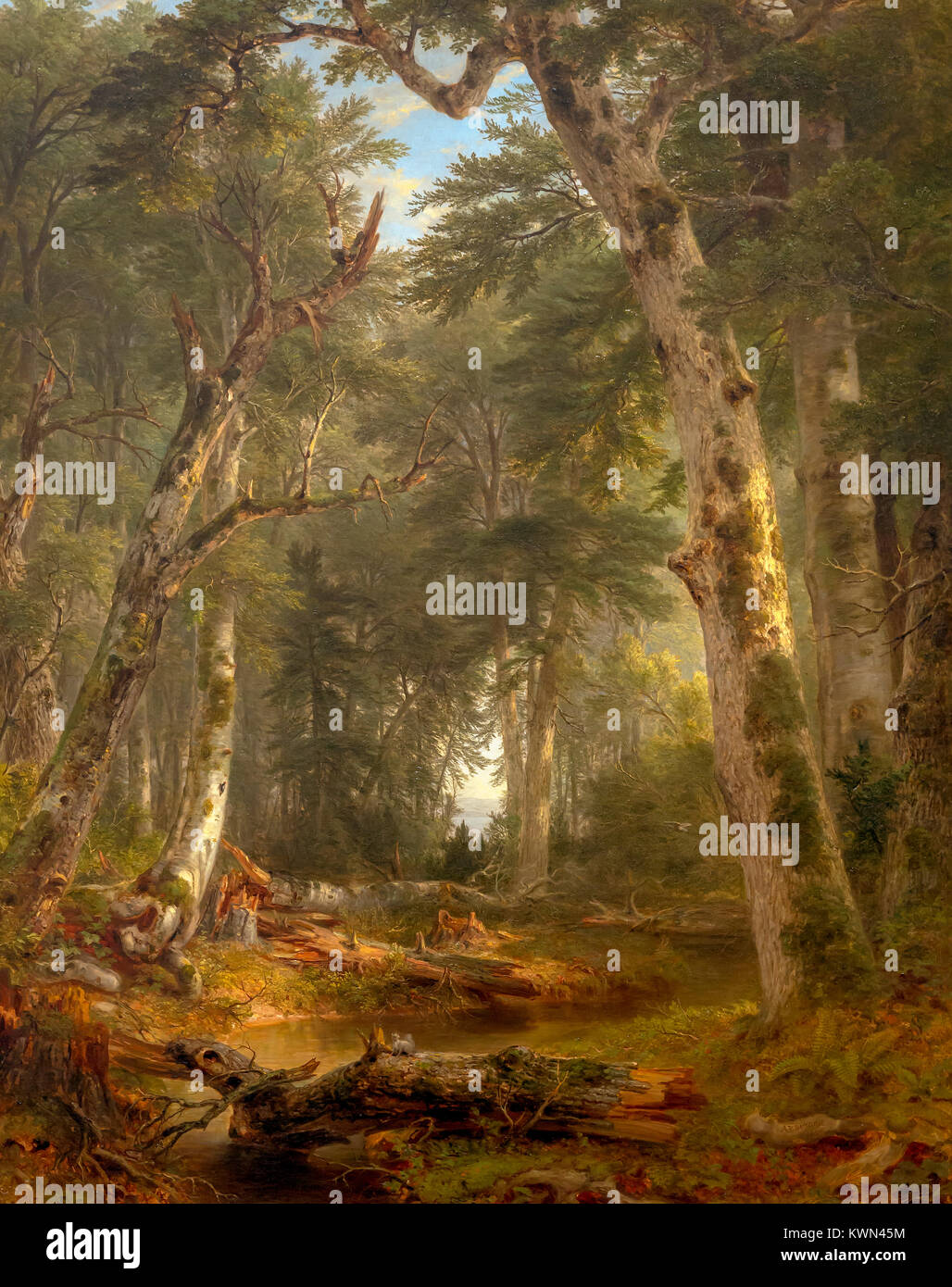 In the Woods, Asher B Durand, 1855, Metropolitan Museum of Art, Manhattan, New York City, USA, North America - Stock Image