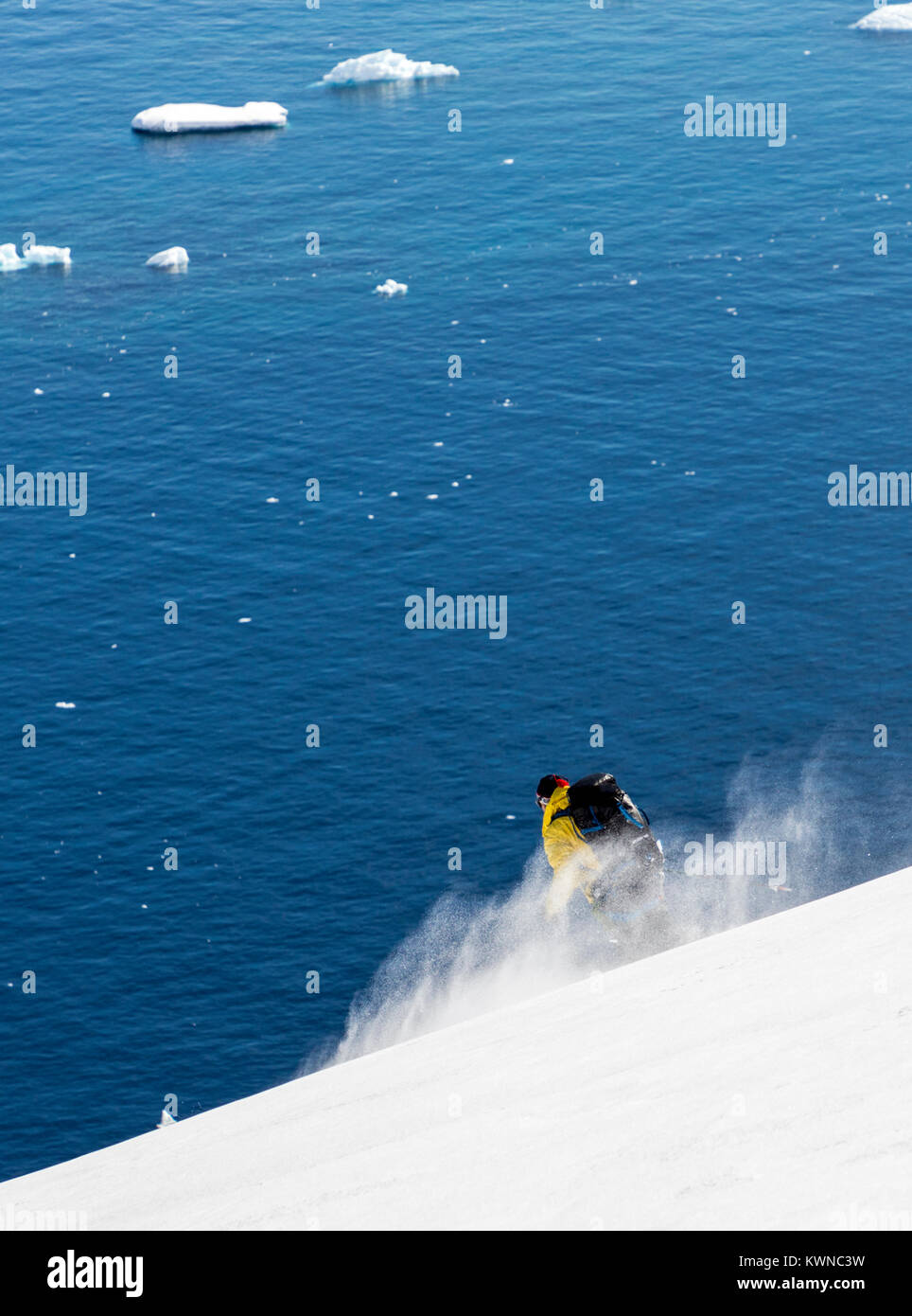 Alpine ski mountaineer guide skiing downhill in Antarctica; Rongé Island; Arctowski Peninsula - Stock Image