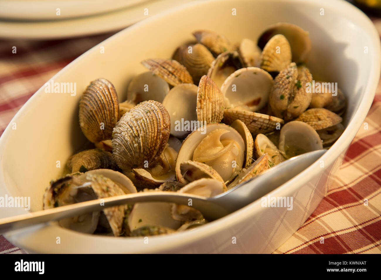 Clams served in restaurant in Croatia - Stock Image
