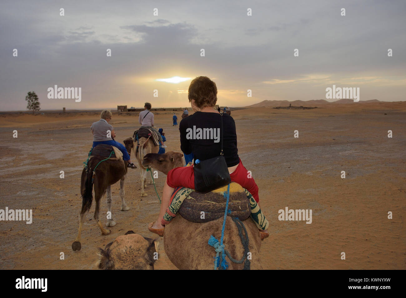 camel excursion to the sand dunes at Merzouga, Morocco, North Africa Stock Photo