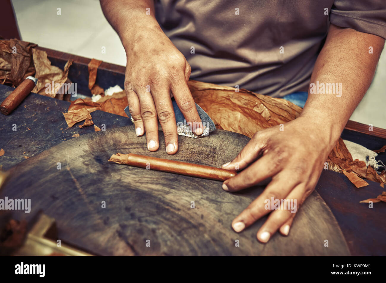 Closeup of hands making cigar from tobacco leaves. Traditional manufacture of cigars. Dominican Republic Vintage - Stock Image