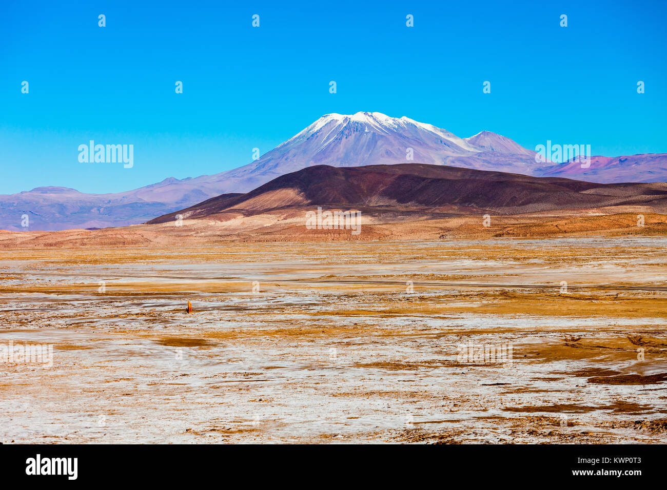 Ollague stratovolcano in the Andes, on the border between Bolivia and Chile. - Stock Image