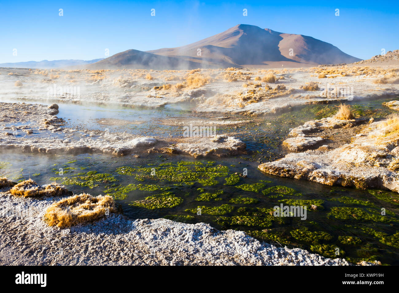 Hot spring in the Altiplano of Bolivia - Stock Image