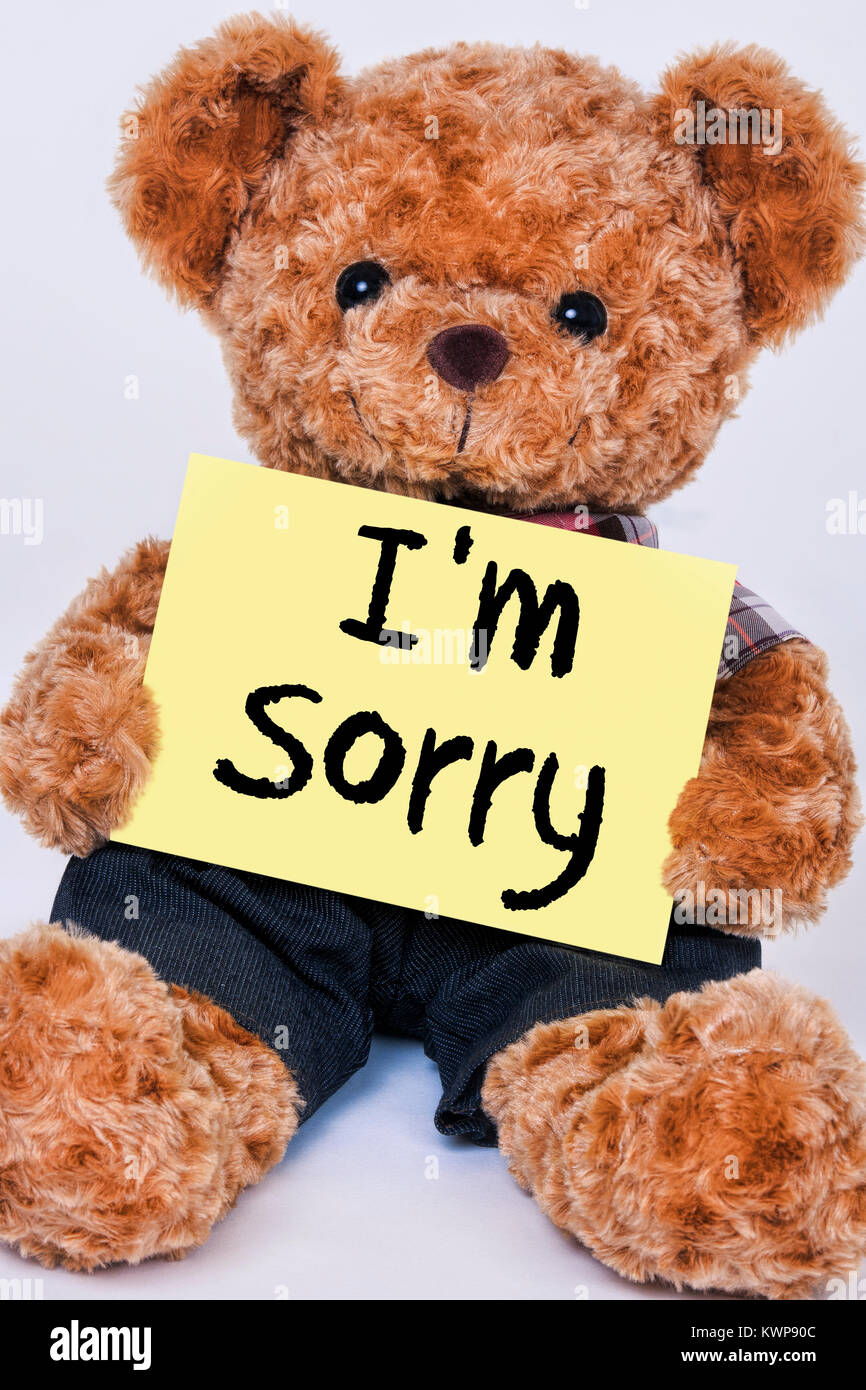 Cute teddy bear holding a yellow sign that reads I'm Sorry isolated on a white background - Stock Image