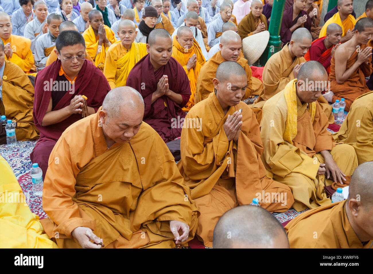 Monks praying at the foot of the Bodhi tree (where the Buddha is said to have gained enlightenment) at the Mahabodhi - Stock Image