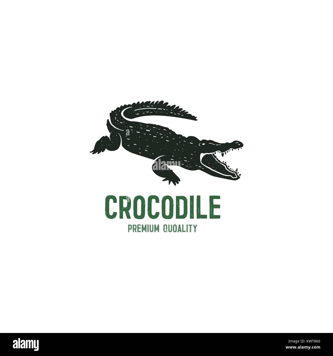 crocodile logo template symbol of alligator crocodile with text