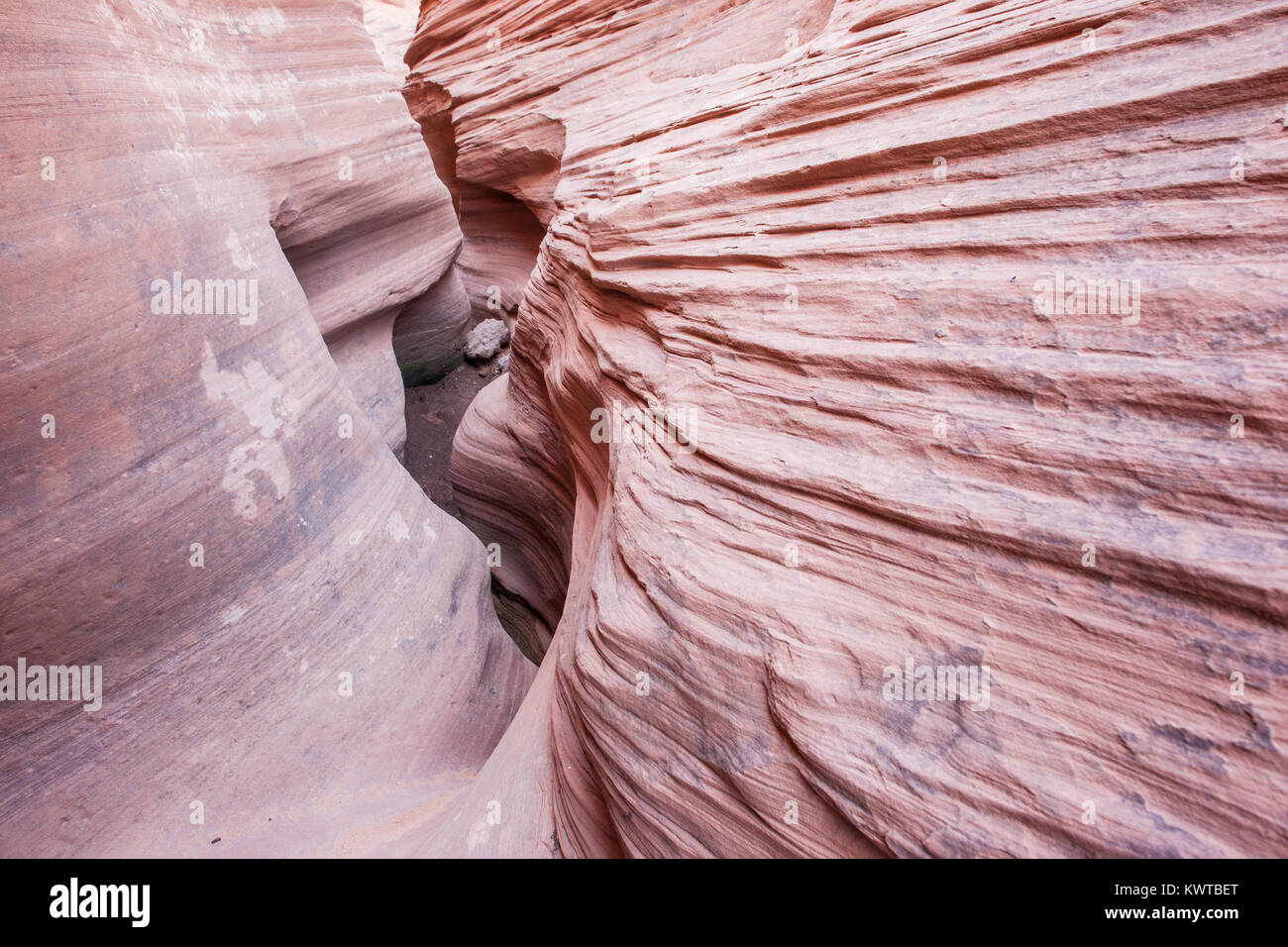 Peekaboo Canyon, a slot canyon in Grand Staircase-Escalante National Monument, Utah, USA. Stock Photo