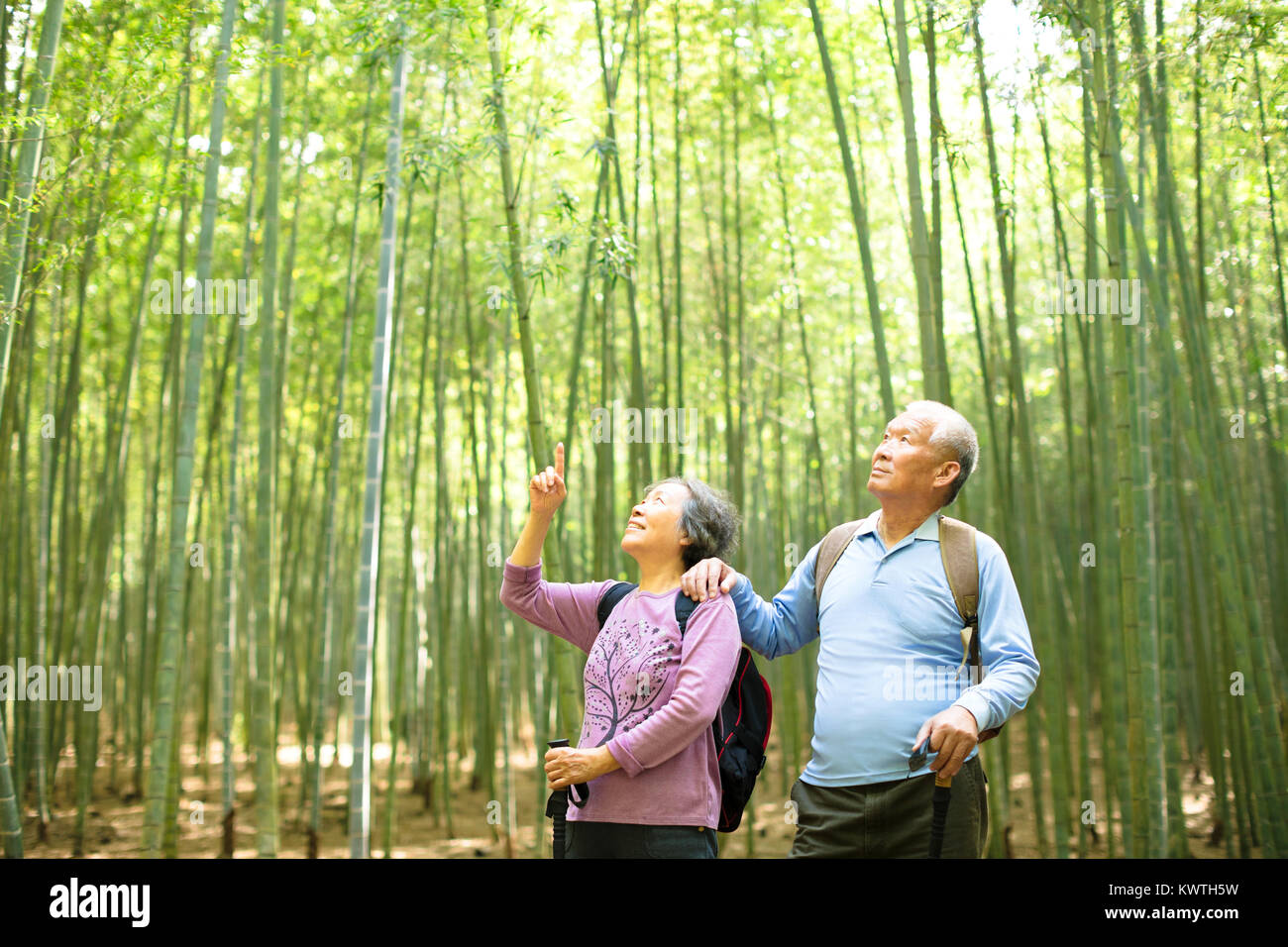 Senior Couple hiking in green bamboo forest - Stock Image