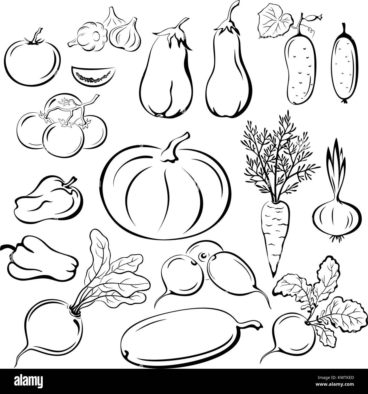 Vegetables Outline Pictograms Set - Stock Vector