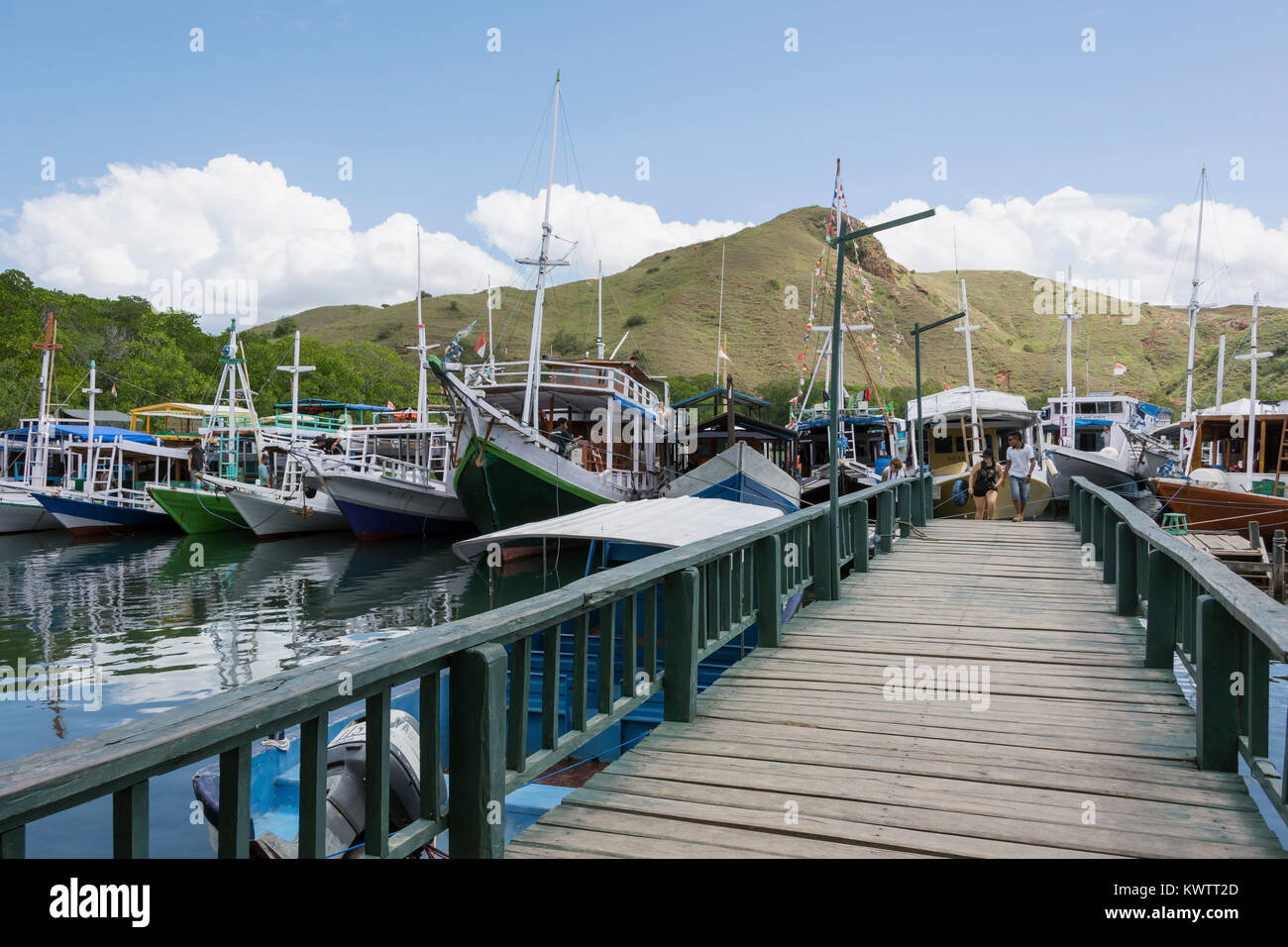 The dock at Rinca Island, one of 5 islands where the Komodo dragons reside, West Flores, Indonesia - Stock Image