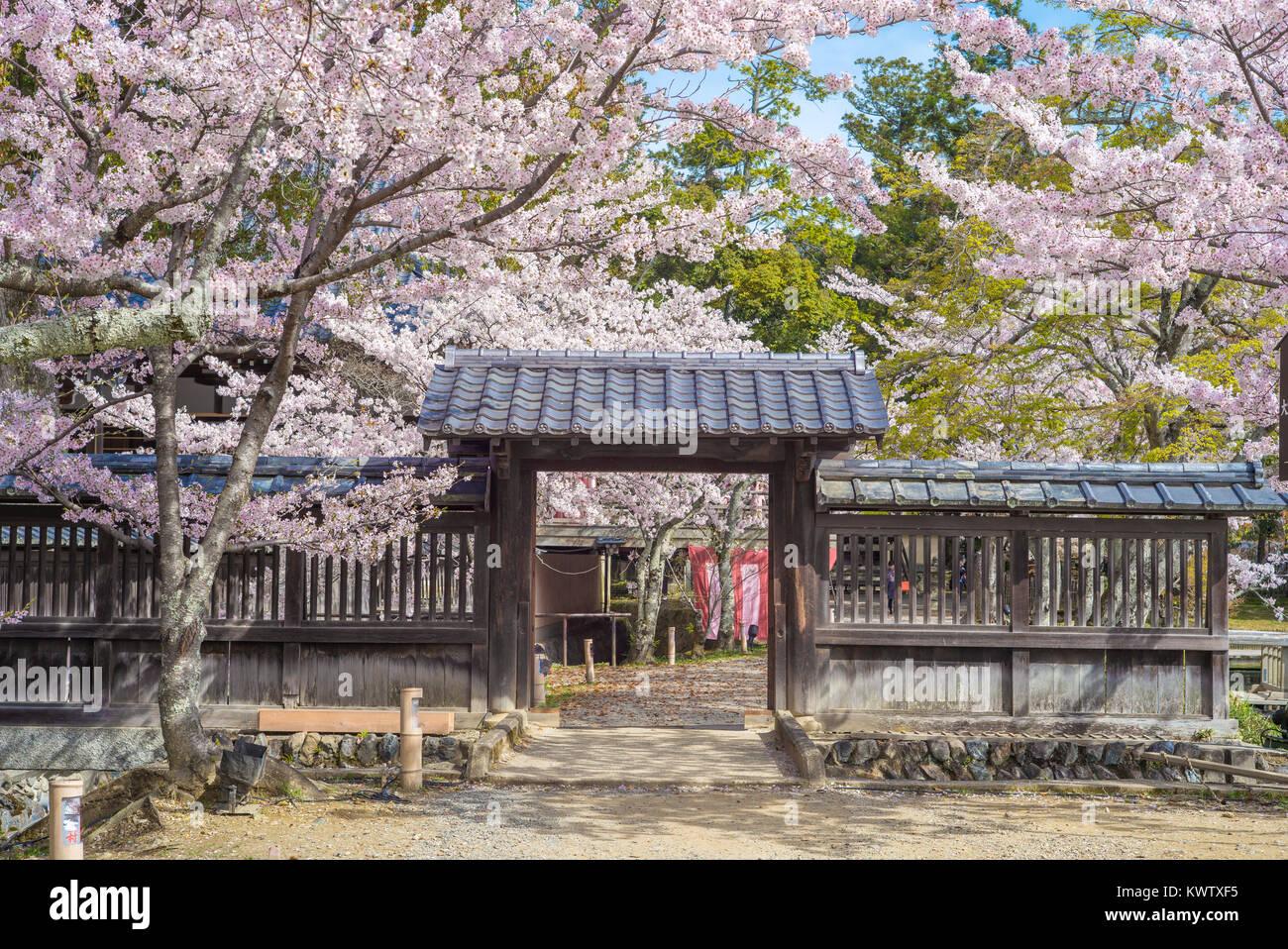 Daikaku-ji Temple at arashiyama, kyoto, japan Stock Photo
