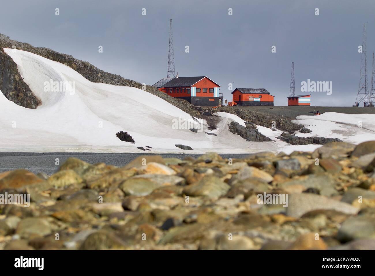 penguins antartica - Stock Image