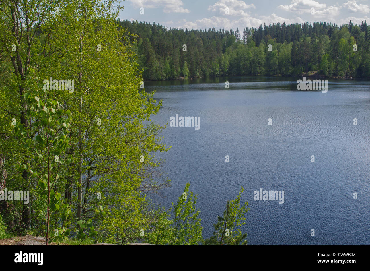 lake Yastrebinoye, Priozersky district in Leningrad region, Russia - Stock Image