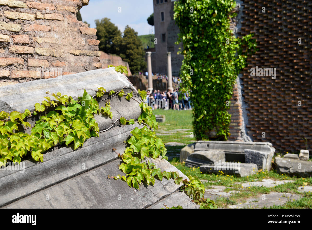 Sunny day in the Forum Romanum, Rome, Italy - Stock Image