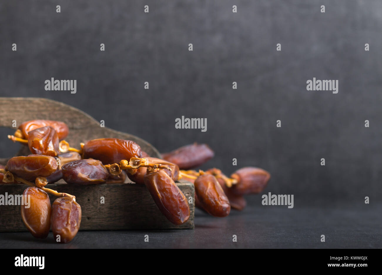 fresh harvested dates on a grey background - Stock Image