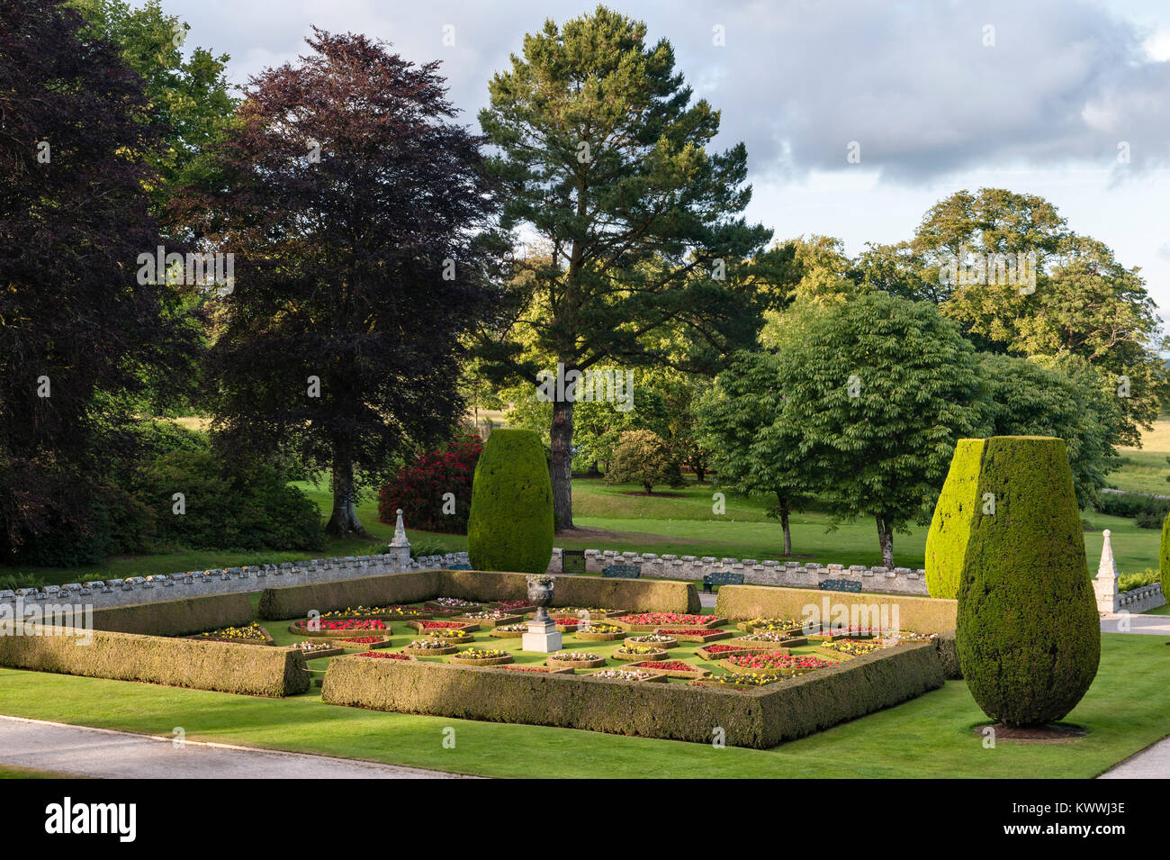 Lanhydrock, Bodmin, Cornwall, UK. The formal box parterre of 1858 - Stock Image