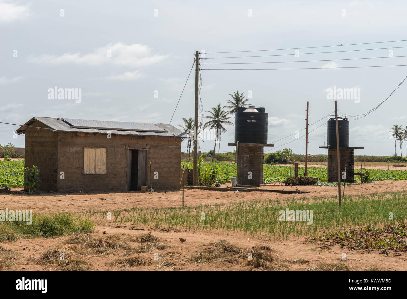 Solar panels on a roof, providing clean energy for The irrigation of fields, Anloga, Volta Region, Ghana, Africa - Stock Image