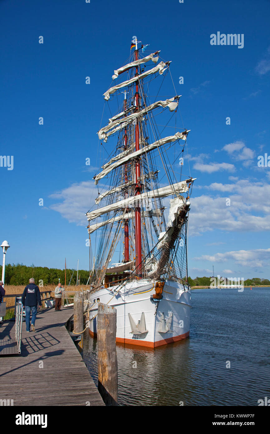 The square-rigged ship 'Aphrodite' at harbour of Zingst, Zingster Strom, Fischland, Mecklenburg-Western - Stock Image