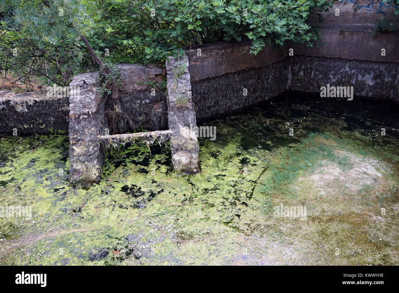 Dirt water in concrete pond - Stock Image