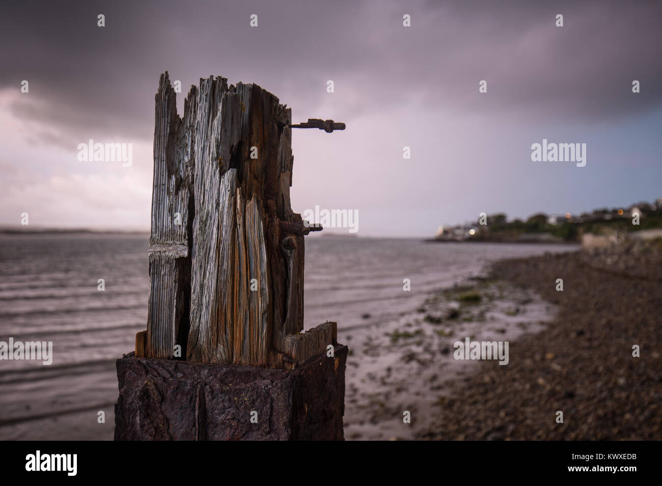 close up of an old shipyard timber near Appledore in Devon - Stock Image