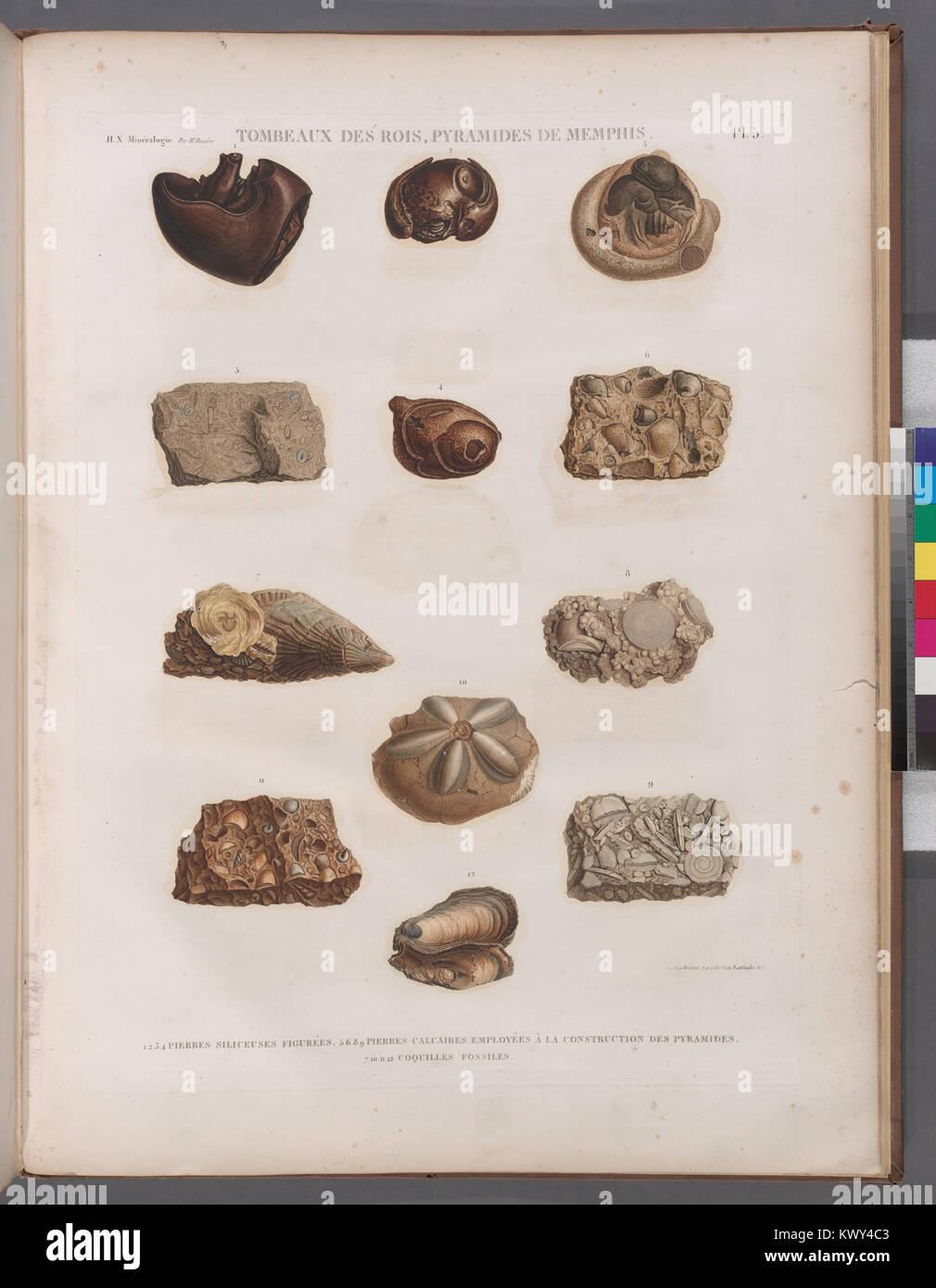 Minéralogie. Tombeaux des Rois, Pyramides de Memphis. 1-4. Pierres siliceuses figurées; 5.6.8.9. Pierres - Stock Image