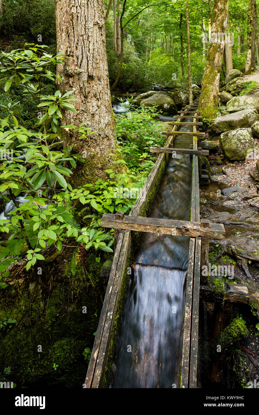 Water trough brings water to the Alfred Reagan tub mill along the Roaring Fork River in Great Smoky Mountains National - Stock Image