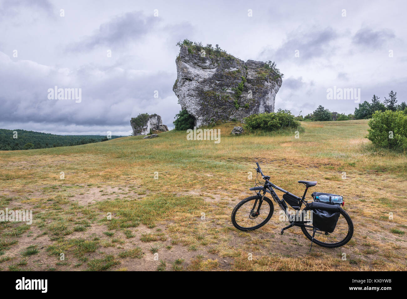 Large outlier rock next to castle in Mirow village, Polish Jura region in Silesian Voivodeship of southern Poland - Stock Image