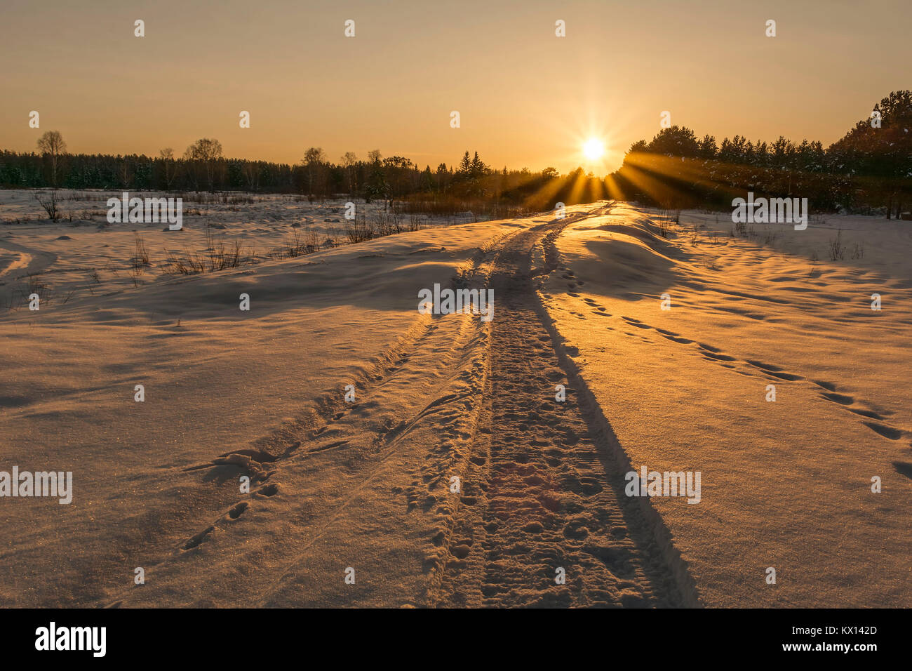 Lonely trail from snowmobile disappearing into distance in winter, at sunset. - Stock Image