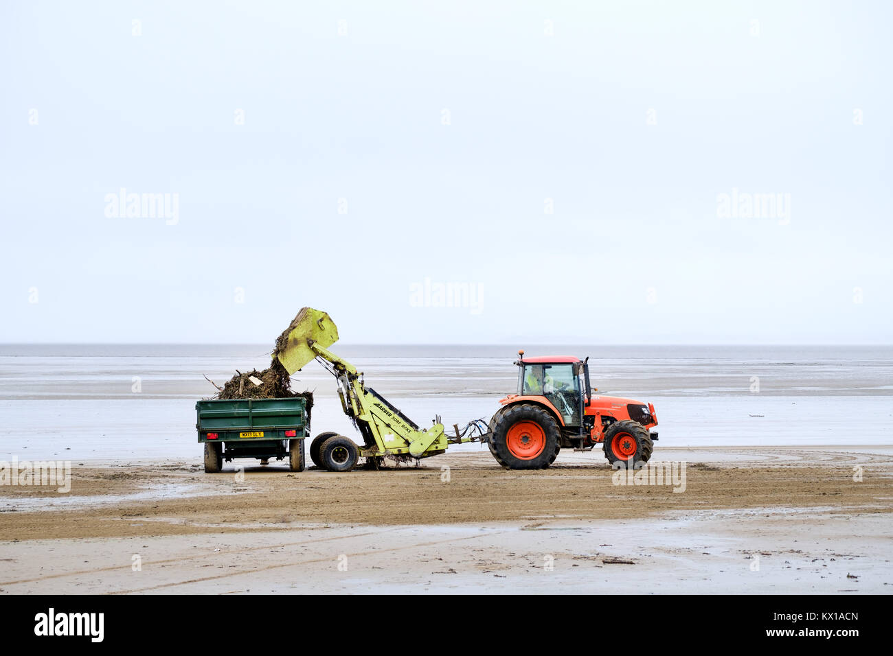 A local authority tractor is used to clear debris and discarded or washed up rubbish polluting the beach at Weston - Stock Image