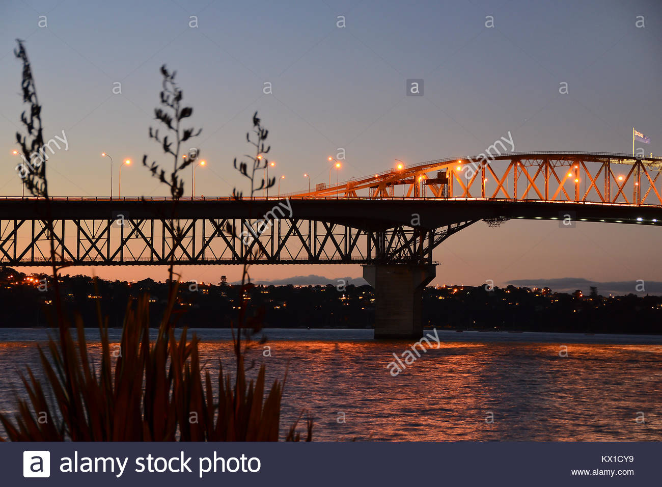Auckland harbour bridge at sunset with flax in foreground - Stock Image