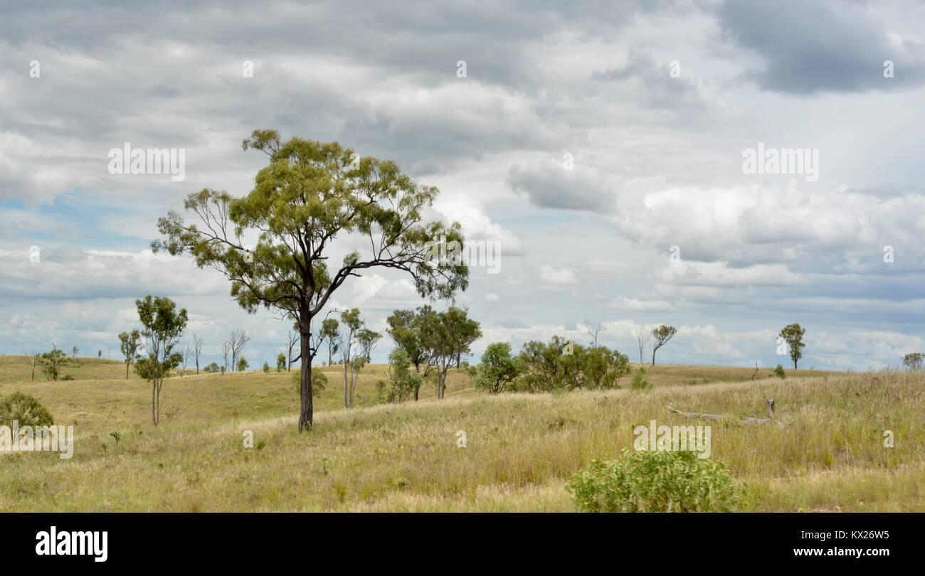 Queensland, Australia - Stock Image