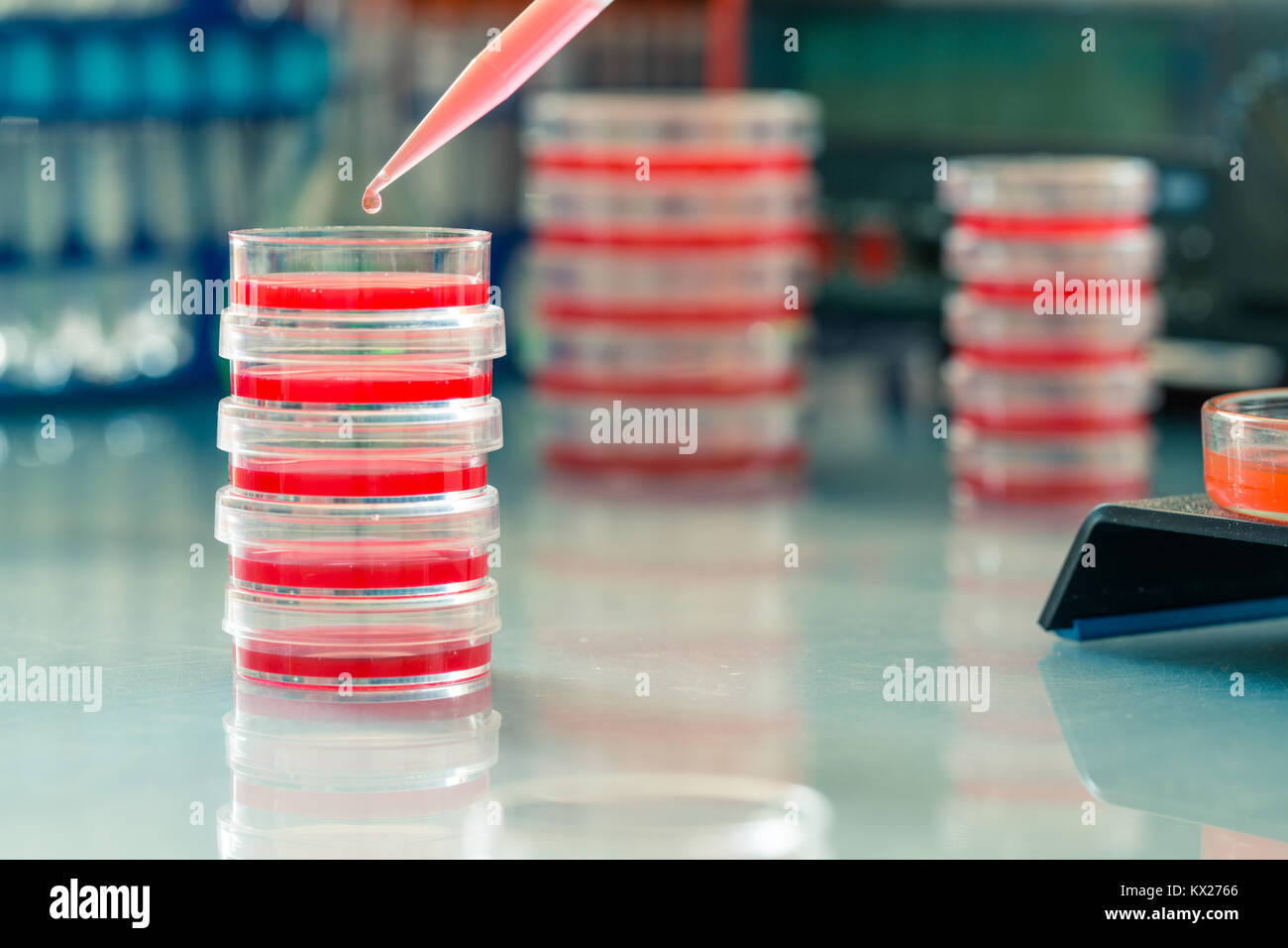 Laboratory of polymer chemistry - Stock Image