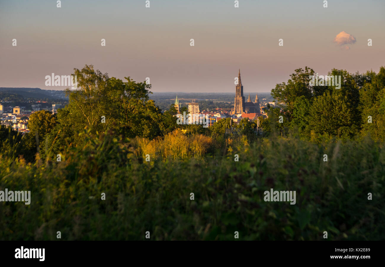 view on the ulm minster from kuhberg Stock Photo