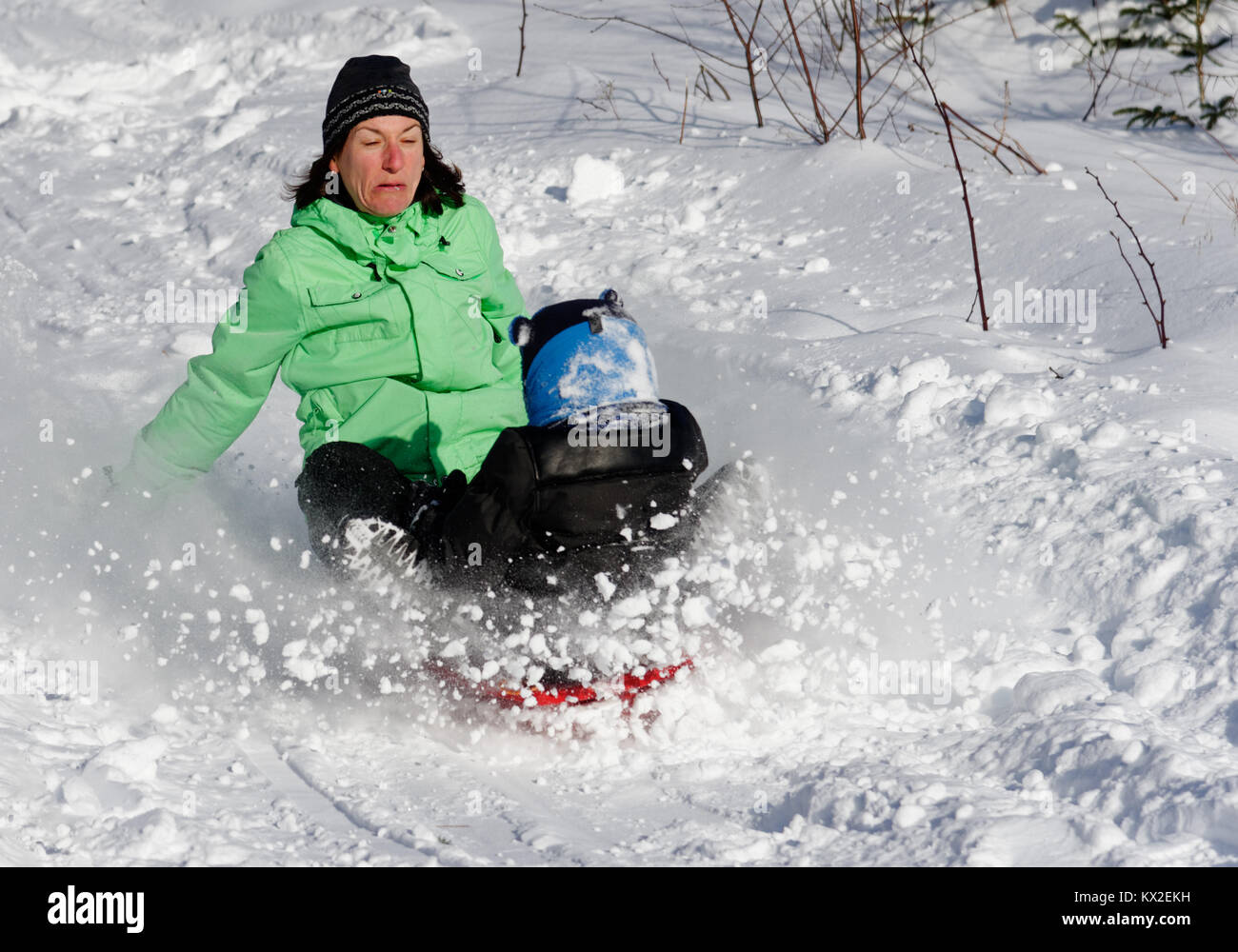 An adult woman sledging with a little boy (5 yr old), looking terrified as she realises she is going to crash - Stock Image
