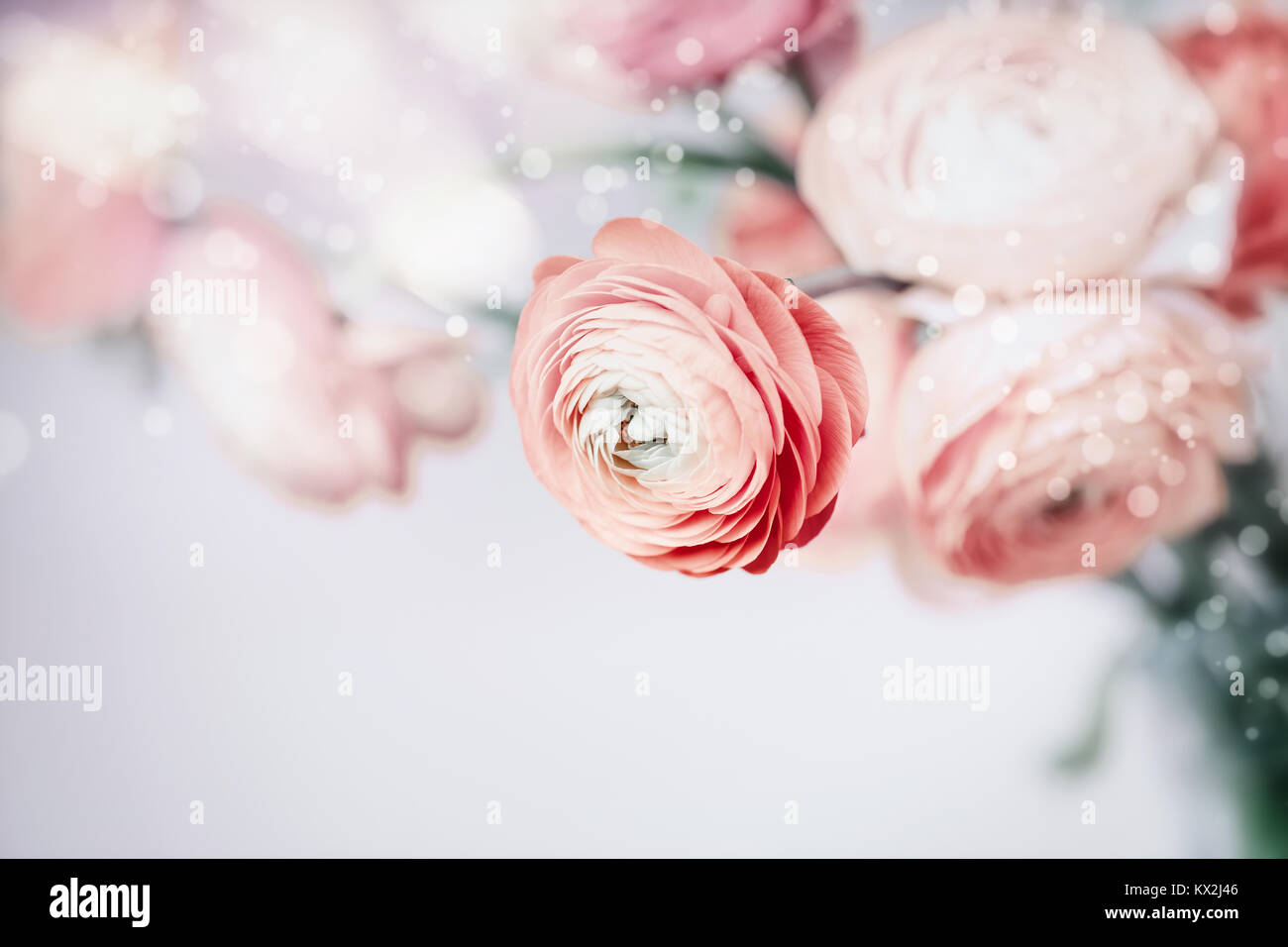Pastel Floral Background With Pretty Flowers Stock Photo