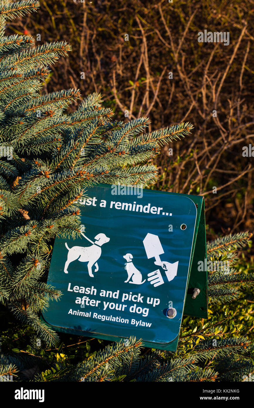 Bylaw sign asking pet owners to pick up after their dogs - Stock Image