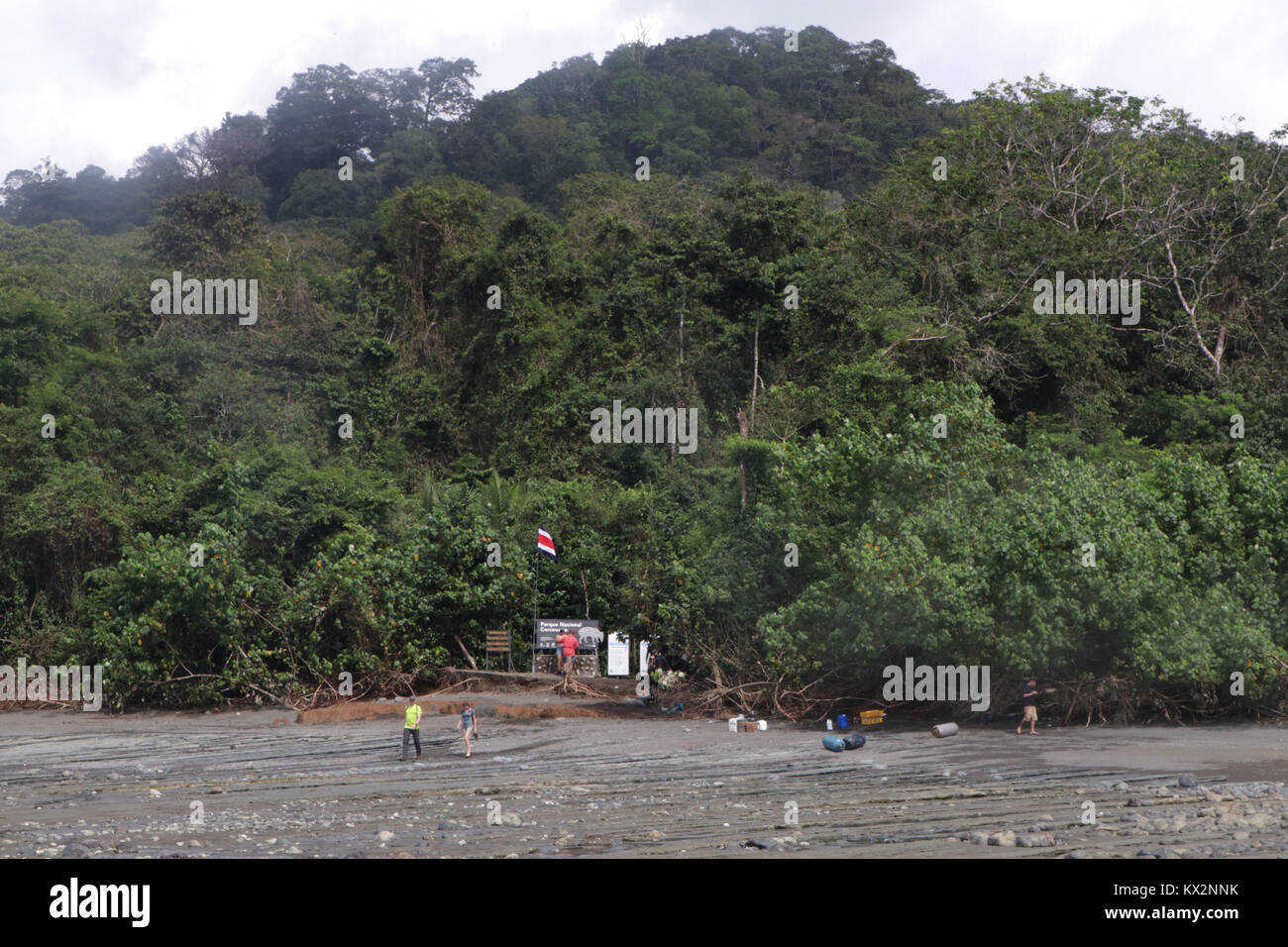 Tourist wading in ocean to boat view from ocean Corcovado national Park Osa Peninsula Costa RicaStock Photo