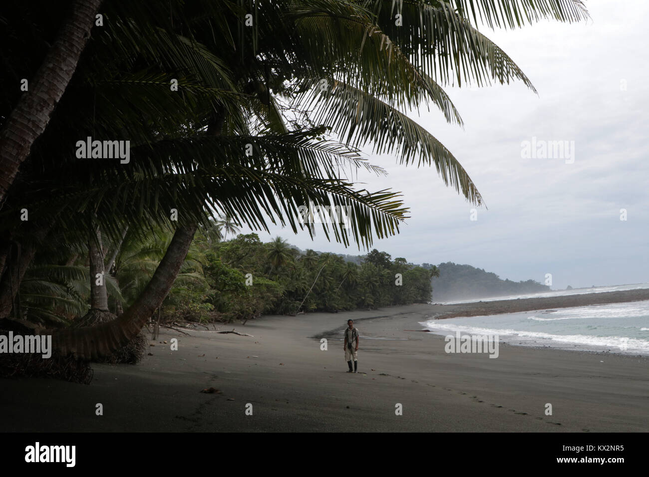Hiker on beach Corcovado national Park Costa Rica Osa Peninsula Stock Photo