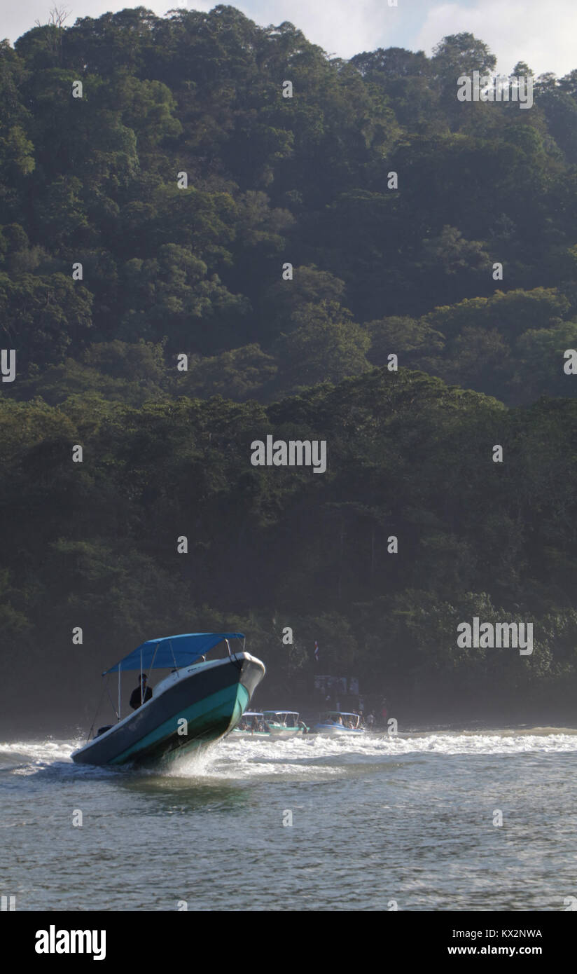 Boat with tourist view from ocean Corcovado national Park Osa Peninsula Costa RicaStock Photo