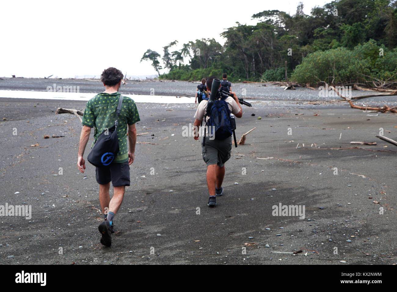 Hiker crossing river Osa Peninsula Costa Rica beach primary rain forest. Tropical Jungle treeStock Photo