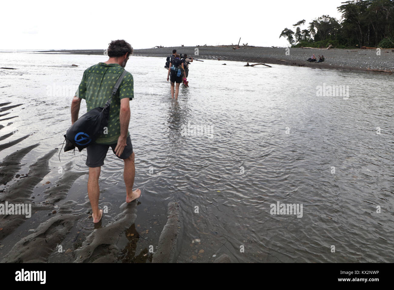 Hiker crossing river Osa Peninsula Costa Rica beach primary rain forest. Tropical Jungle tree Stock Photo