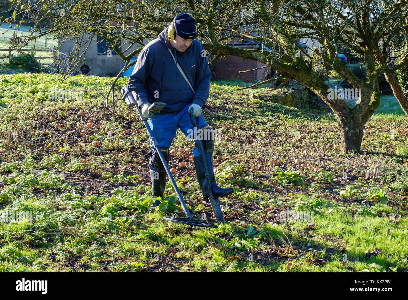 Jew Detector: Man Metal Detecting Stock Photos & Man Metal Detecting