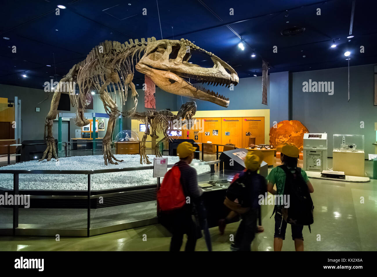 NAGOYA, JAPAN - NOVEMBER 18, 2015: Dinosaur skeletons displayed at the first floor of Nagoya City Science Museum, the exhibition room is one of the mo Stock Photo