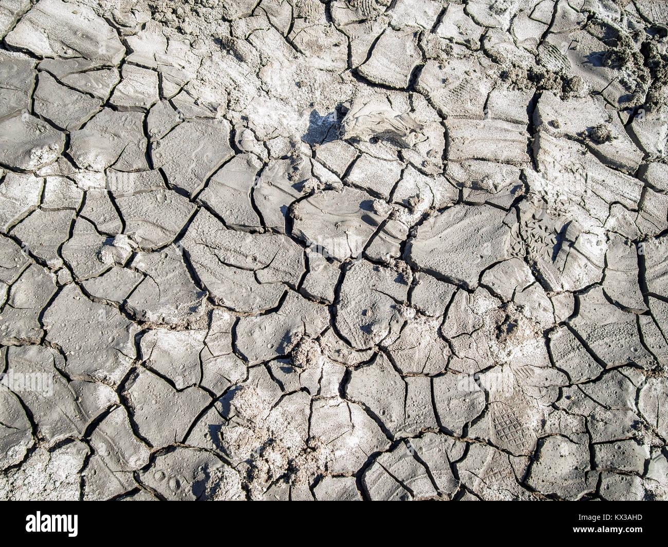 Gray mud background - Stock Image