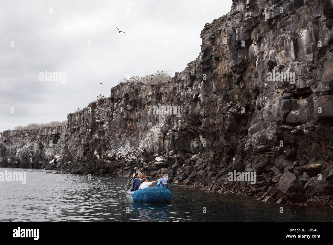 Tourists in a boat looking at birds on the lava rock cliffs, Genovesa Island, Galapagos Islands Ecuador South America - Stock Image