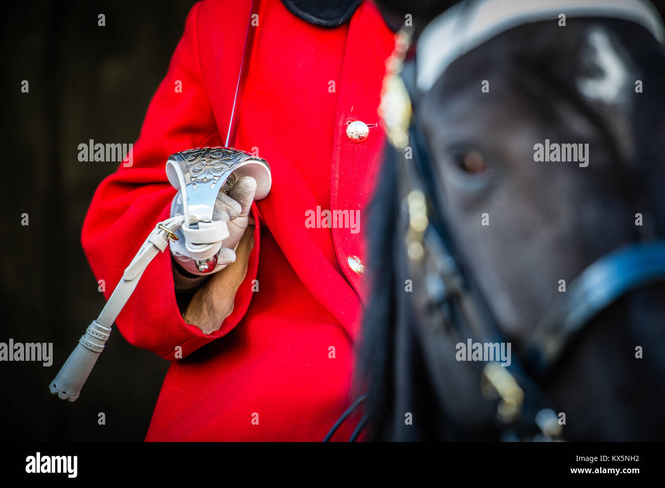 Member of the Household Cavalry stands guard on horseback at Horse Guards Parade, Whitehall London Stock Photo