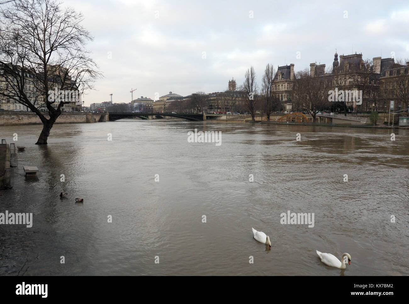 Paris, France. 08th Jan, 2018. Overlooking the 'pont d'Arcole' bridge and the city centre from the 'Isle - Stock Image